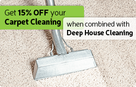 great carpet cleaning deal