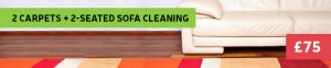 sofa and carpet cleaning deal