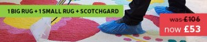 great cleaning offer big + small rug + skotchgard treatment