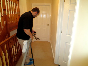 professional carpet cleaning barking