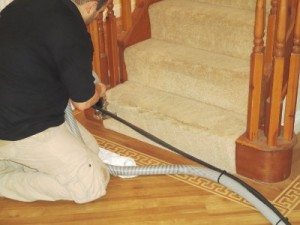 expert carpet cleaning in hammersmith