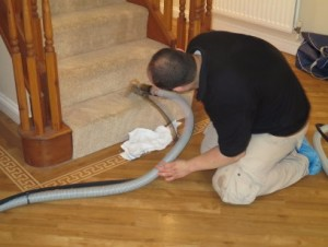efficient carpet cleaning Kingston